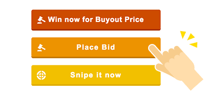 How to Place Bids 1